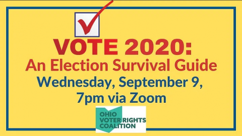Vote 2020: An Election Survival Guide
